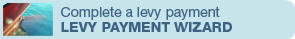 Levy Payment Wizard